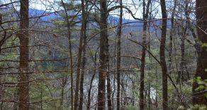 Sweeping Lake Views